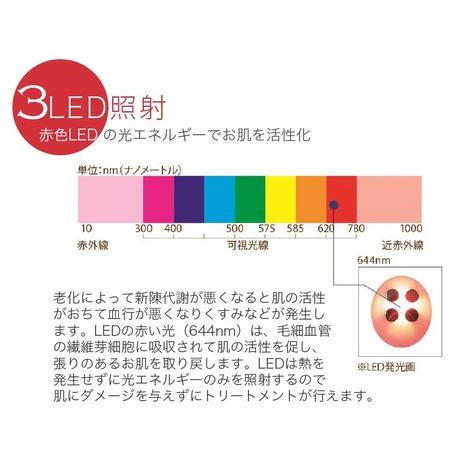 【予約販売 3月上旬発送】プラズマボーテ(本体のみ)
