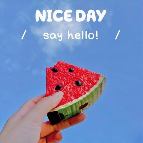 Watermelon airpods case