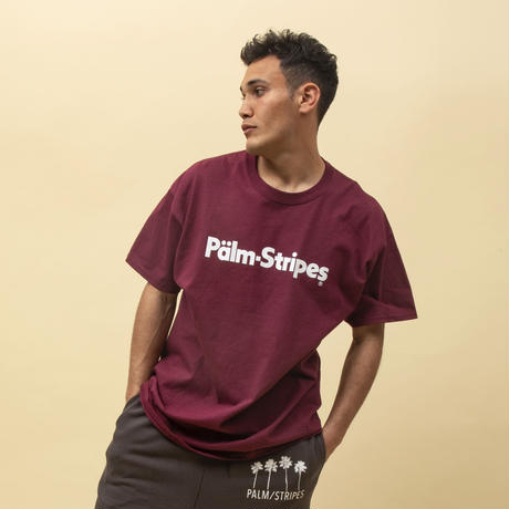 【OUTLET】DAZ TEE by PALM/STRIPES