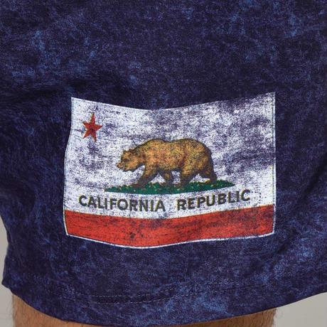 CALIFORNIA FLAG SHORTS by  PALM/STRIPES