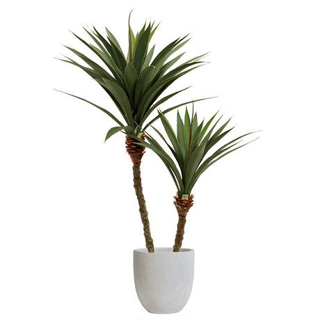 【EZ BARRIER GREEN 365】抗菌人工樹木 アガベ2本立  H115㎝(陶器鉢付)