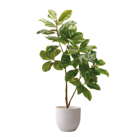 【EZ BARRIER GREEN 365】抗菌人工樹木 マグノリア H150㎝(陶器鉢付)