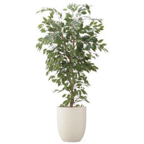 【EZ BARRIER GREEN 365】抗菌人工樹木 ベンジャミンフィカス H180㎝(陶器鉢付)