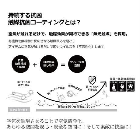 【EZ BARRIER GREEN 365】抗菌人工樹木 ファイカス H200㎝(陶器鉢付)
