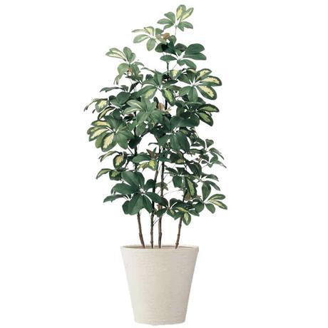【EZ BARRIER GREEN 365】抗菌人工樹木 ベビーシェフレラ H100㎝(陶器鉢付)