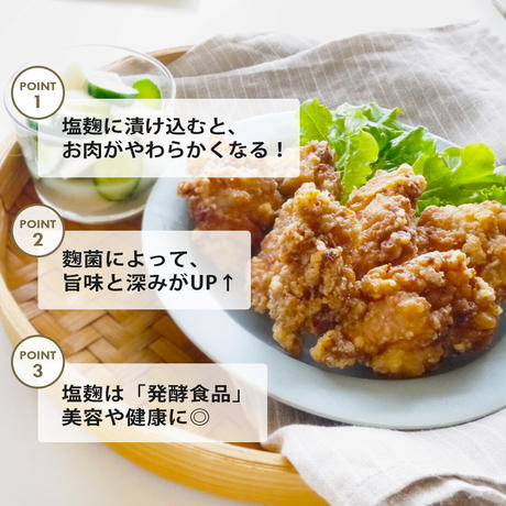 塩麹 粉末 塩麹パウダー 国産麹 国産塩 素材をおいしくする発酵調味料 200g