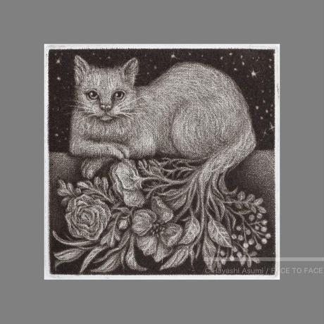 林 明日美作品 「花束をあげる ー夜の猫ー」版画作品
