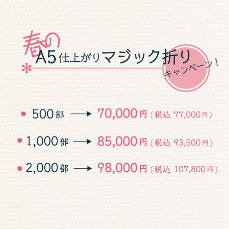 【注文受付終了】マジック折りキャンペーン 【2,000部】