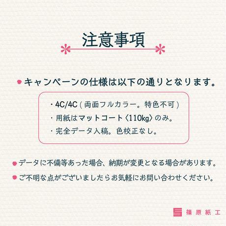 【注文受付終了】マジック折りキャンペーン 【500部】