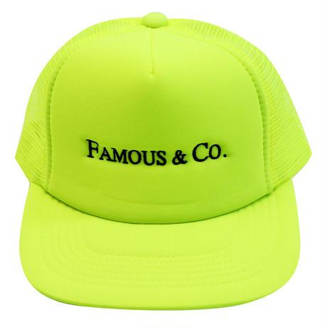 TFN MESH CAP