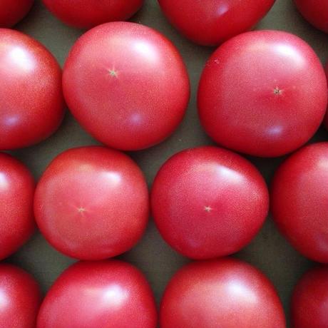 天王トマト Mサイズ一箱 約4キロ(送料込み)