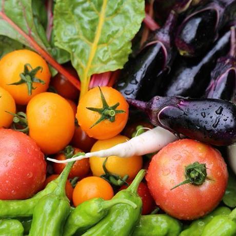 おまかせ野菜セット・Sサイズ