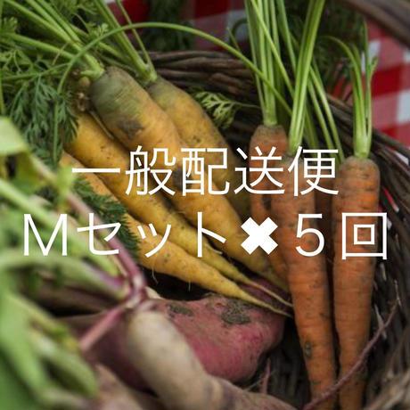 !遠方の方限定!【一般配送】Mセット定期便(全5回)