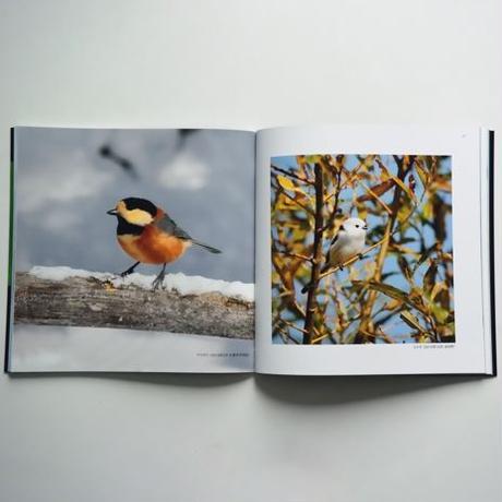 北邦鳥景 高橋良直写真集