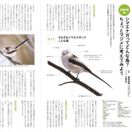 faura(ファウラ)63号【2021.4.25発行】