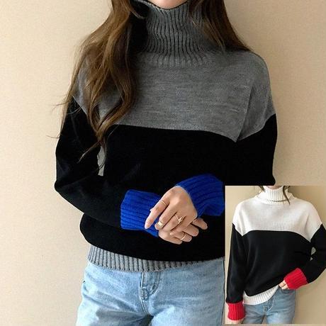 配色のセンスがオシャレなタートルネックのセーター 0057