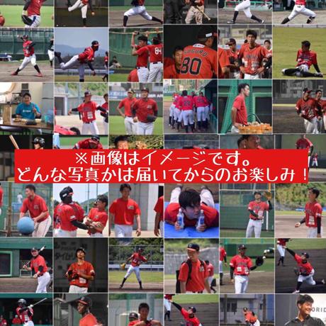 今だけ!【限定ラベル ミレービスケット】1選手10デザインセット☆