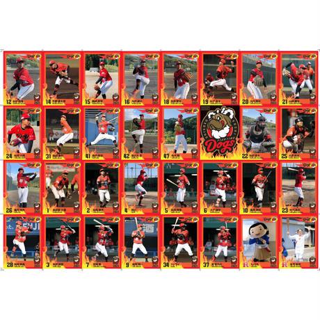 2021選手トレーディングカード