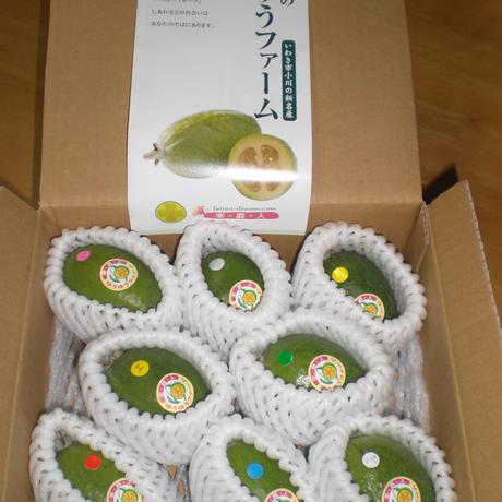フェイジョアの生果実(中玉8個入り)