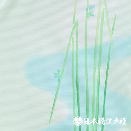 0259 夏物 付け下げ 絽 化繊 黄緑色 流水 草花 身丈160cm