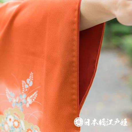 0298 付け下げ 優品Bランク 正絹 袷 赤茶 雲文 草花 有職文様 ぼかし 金彩 身丈160.5cm