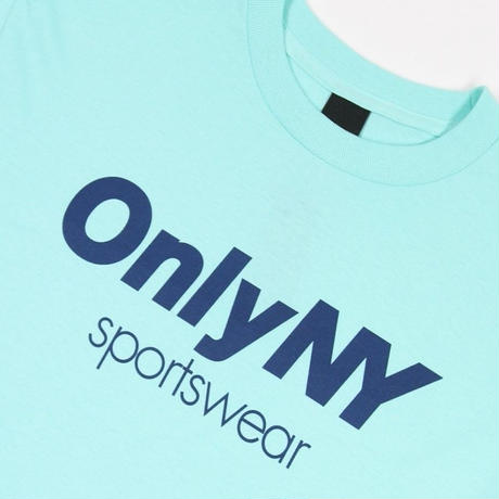 ONLY NYSPORTSWEAR L/S T-SHIRT / ONLY22 CELADON