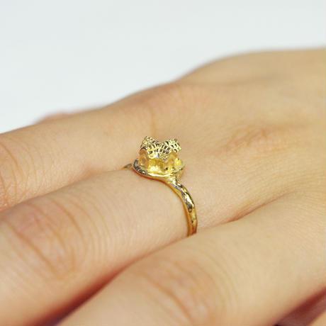 """archi ring"" gold 01/03/10"