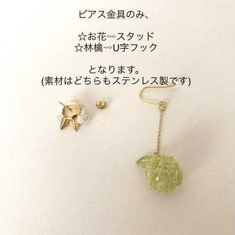 Green apple🍏 ピアス/イヤリング