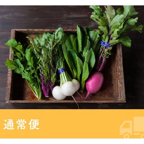 FIO野菜 Sセット
