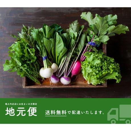 【地元便:定期】FIO野菜  Lサイズ(ファミリー向け 大きめセット)