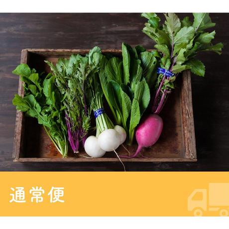 【定期便】FIO野菜 Sセット