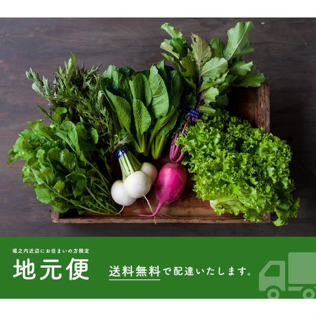 【地元便:定期】FIO野菜 Mセット(ファミリー向け標準セット)