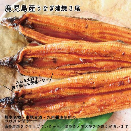 【新入荷】鹿児島産備長炭焼き うなぎ3尾・赤酒使用の特製たれ付き
