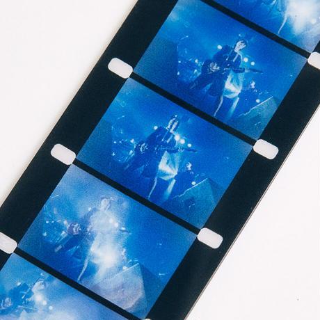 映画:フィッシュマンズ キーホルダー(ブルー)