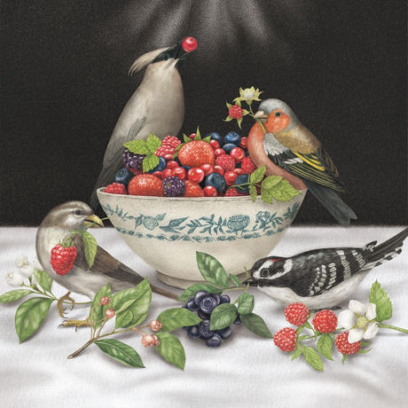 Sparrows - Berries (LP)