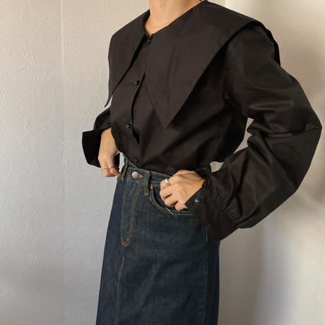 big collar blouse (2color) [ TOP20AW597]