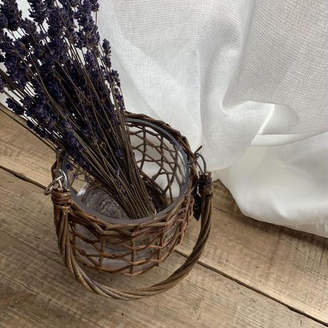 dry flower [lavender]