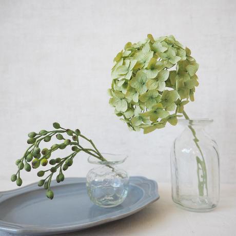 Hydrangea(Pea Green)