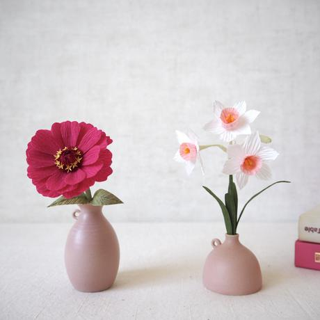 Daffodil(Cherry  Pink)