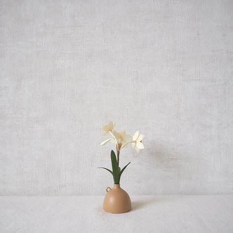 Daffodil( Yellow)