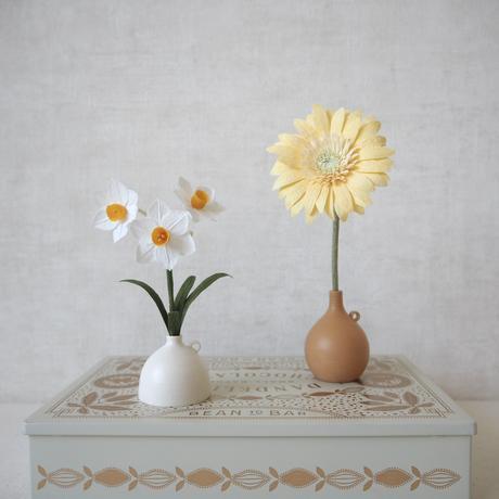 Daffodil( White)