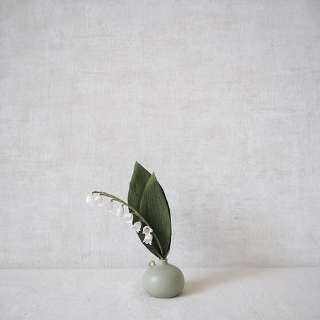 Lily of The Valley( White)