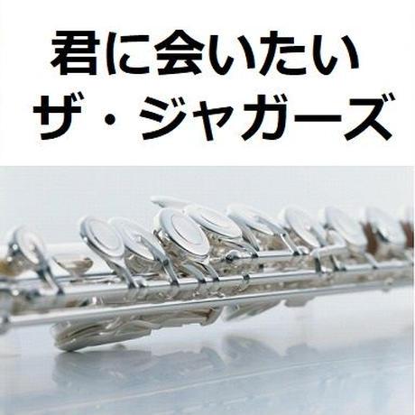 【フルート楽譜】君に会いたい(ザ・ジャガーズ)(フルートピアノ伴奏)