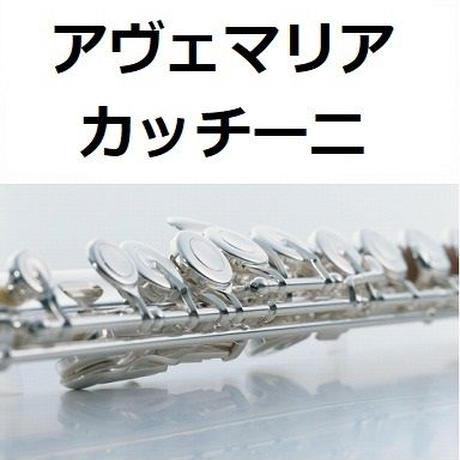 【フルート楽譜】アヴェマリア(カッチーニ)[caccini ave maria](フルートピアノ伴奏)