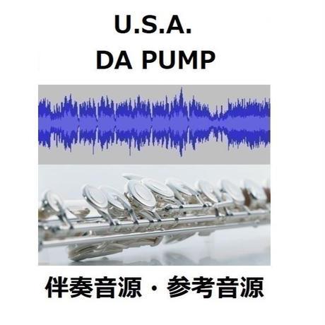 【伴奏音源・参考音源】U.S.A.(DA PUMP)(フルートピアノ伴奏)