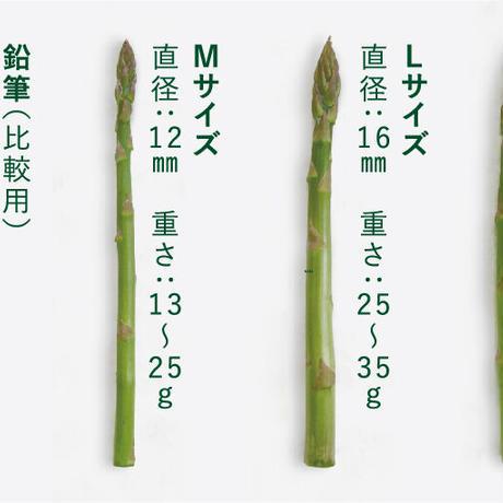 【B品】春風のアスパラ S~2Lサイズ混合 2kg