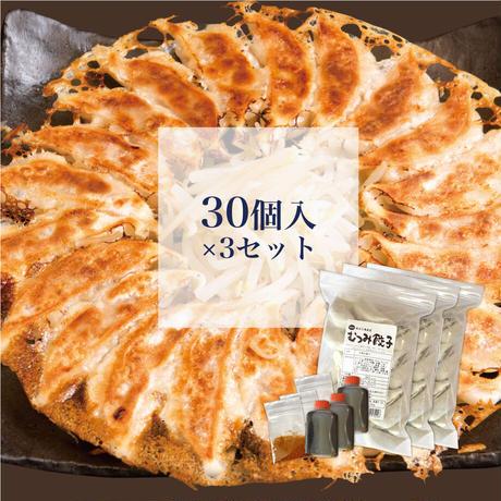 むつみ餃子【冷凍】30個入×3セット