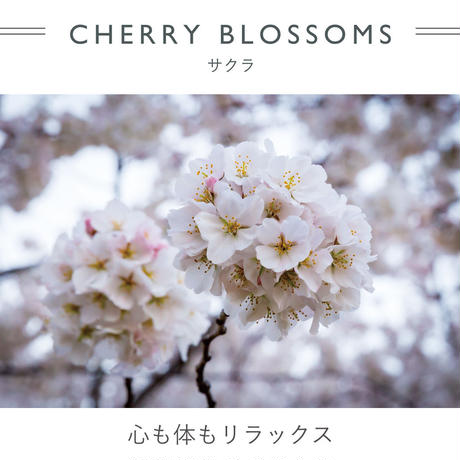 FT03020713  / ROMPERS - cherry blossoms -
