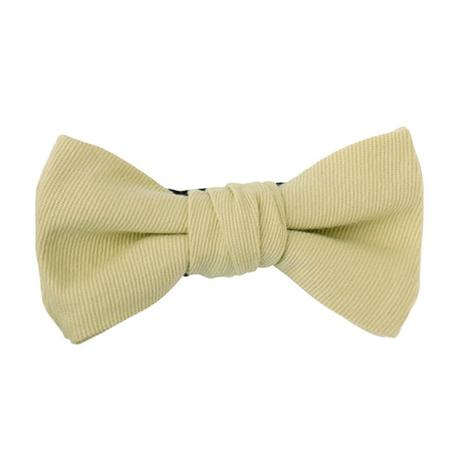 FT04060411 / TWILL BOW-  lettuce -