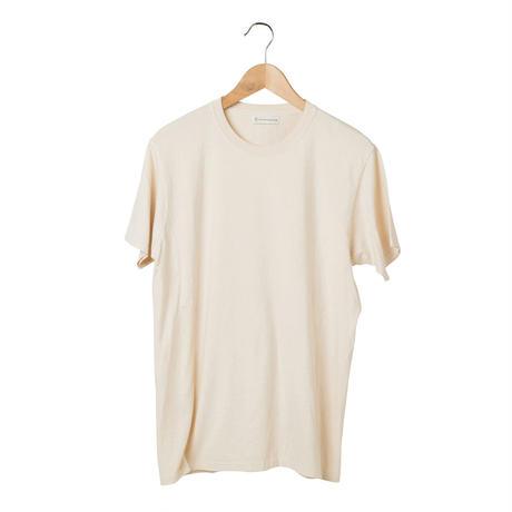 Tシャツ  MALE -  echinacea A -